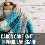 Caron Cake Knit Triangular Shawl